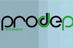 Prodep_basico